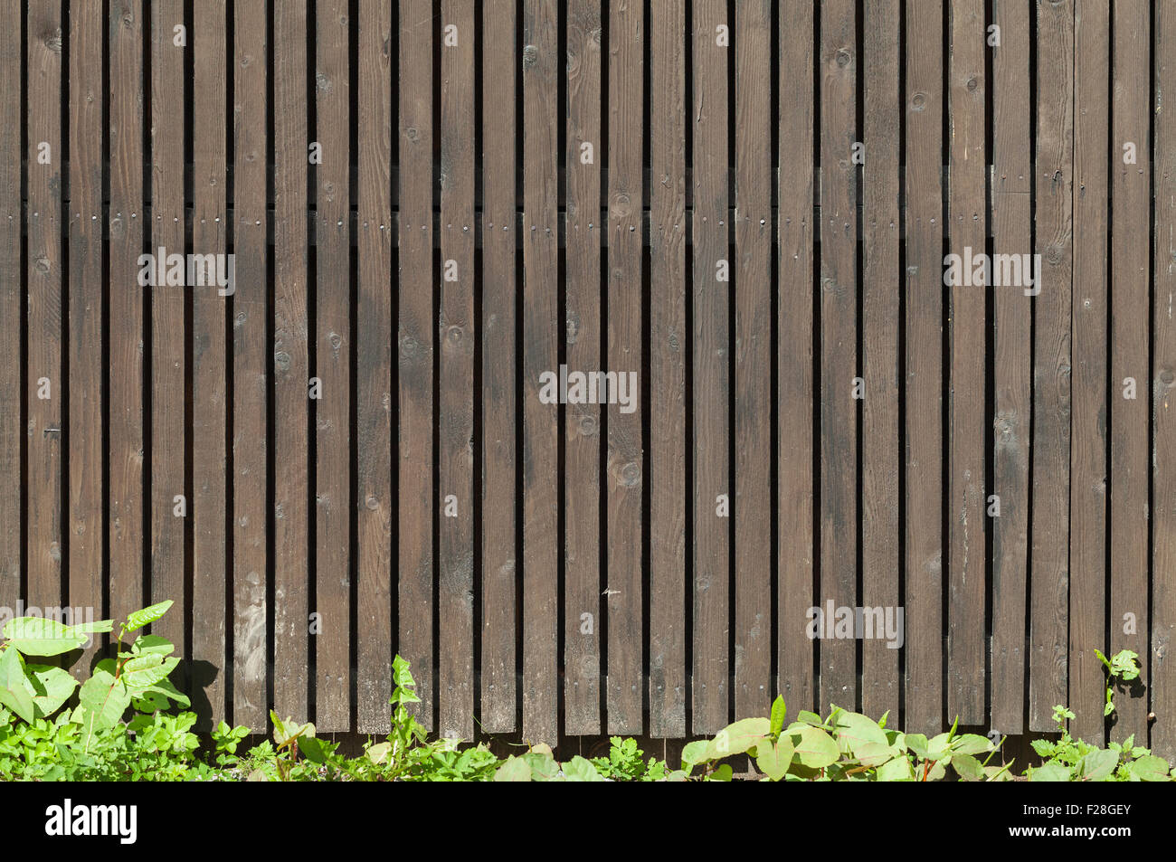 wood picket fence texture. Old Brown Wooden Fence With Green Grass, Background Photo Texture Wood Picket