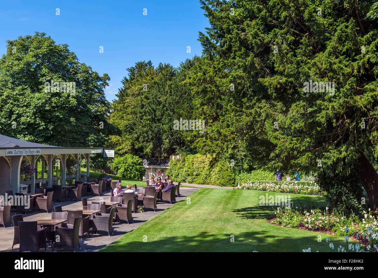 The Duchess' Tea Room at Woburn Abbey, Woburn, Bedfordshire, England, UK - Stock Image