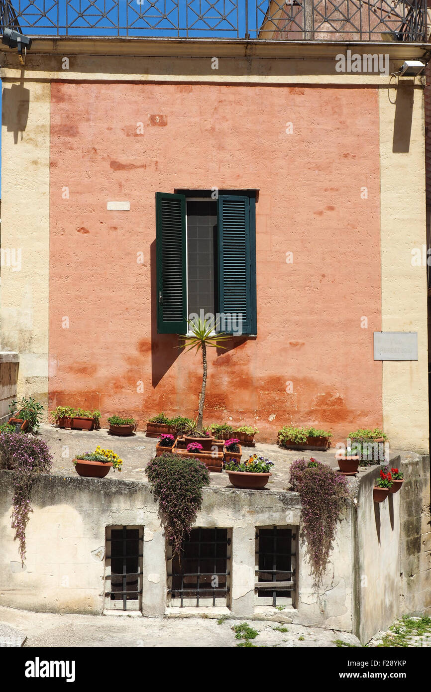 Pot plants on a side of a house. - Stock Image