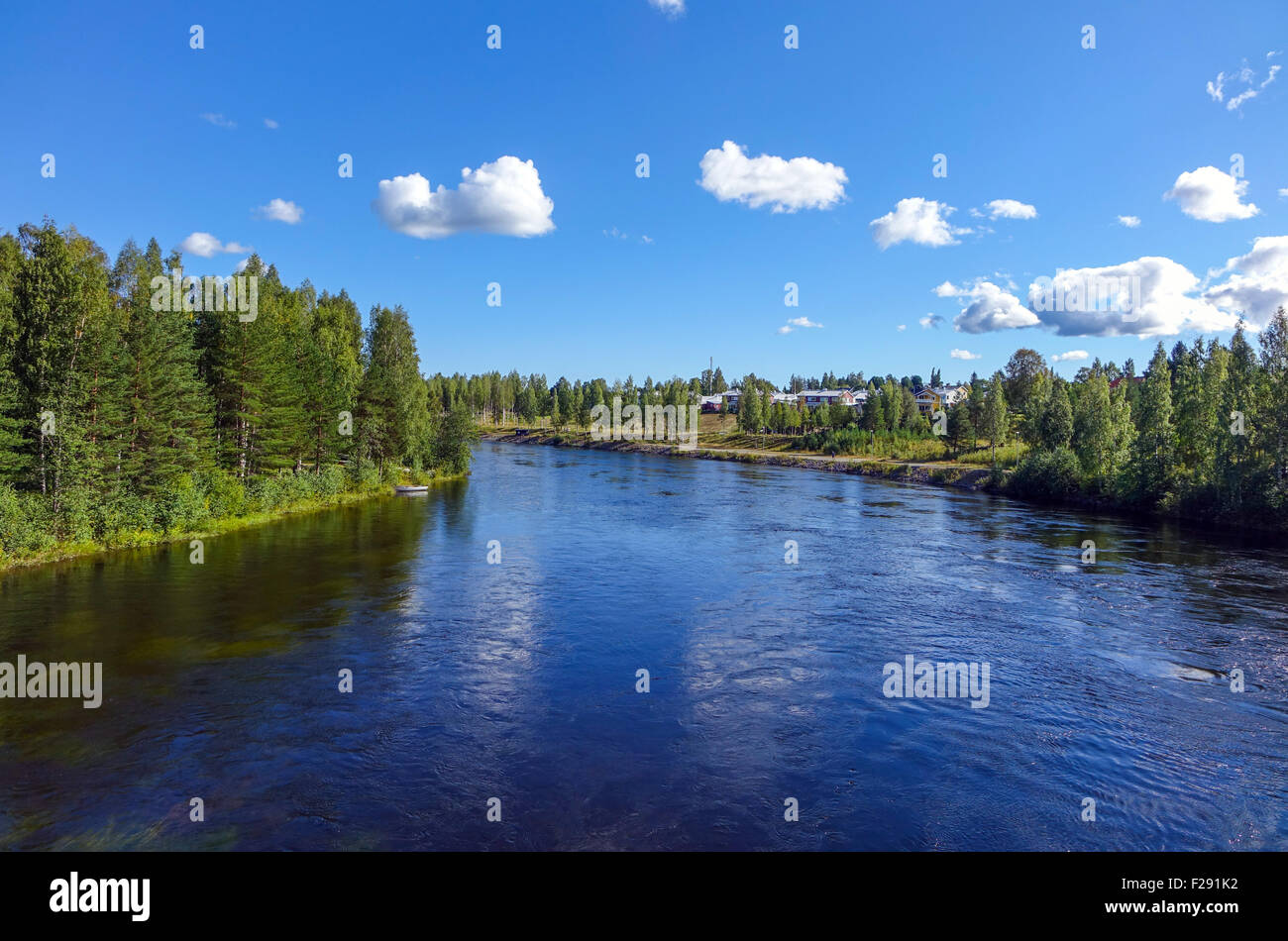 Skelleftea River with reflections and boreal pine forest - Stock Image
