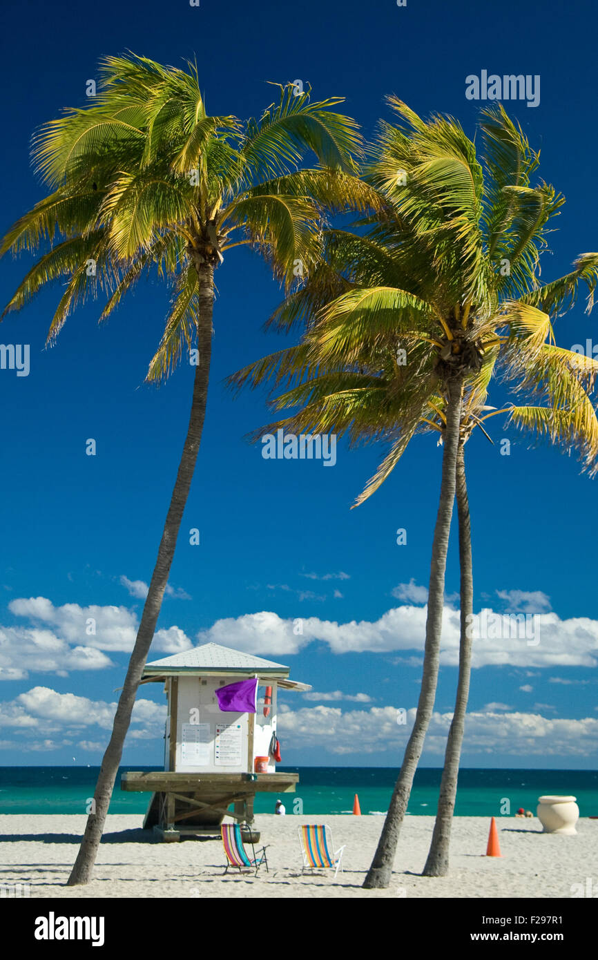 Lifeguard cabin on Miami beach with palm trees in foreground, Florida, U.S.A. - Stock Image