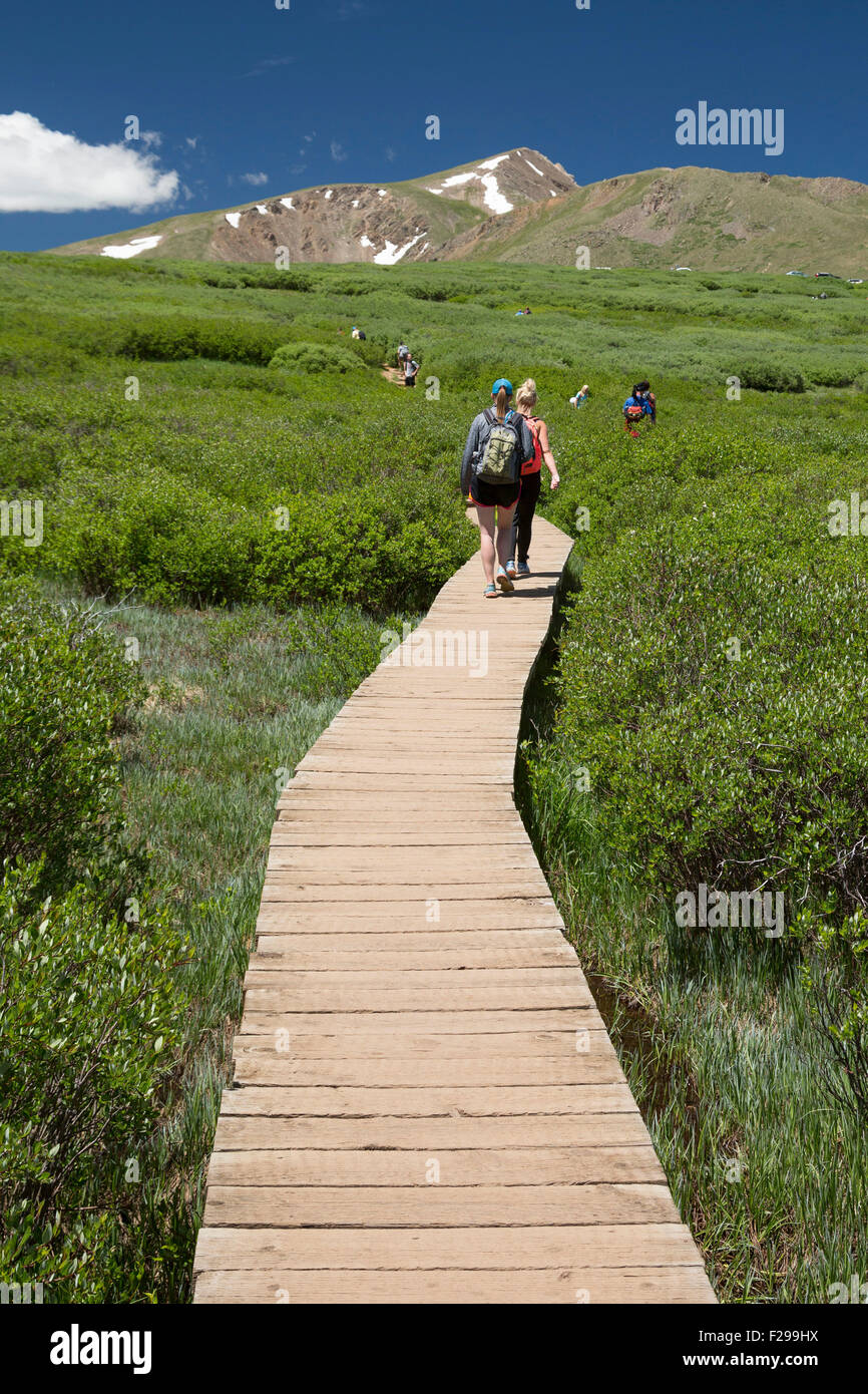 Georgetown, Colorado - People hike the trail from Guanella Pass to 14,060-foot Mt. Bierstadt in the Mt. Evans Wilderness - Stock Image