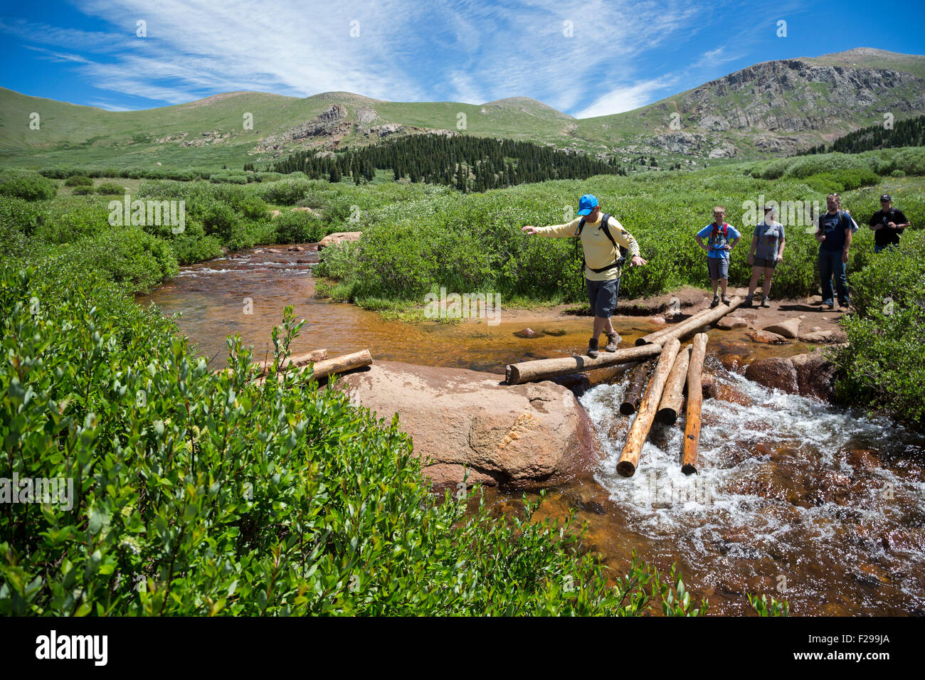 Georgetown, Colorado - Hikers balance on logs while crossing a stream on the trail from Guanella Pass to Mt. Bierstadt. - Stock Image