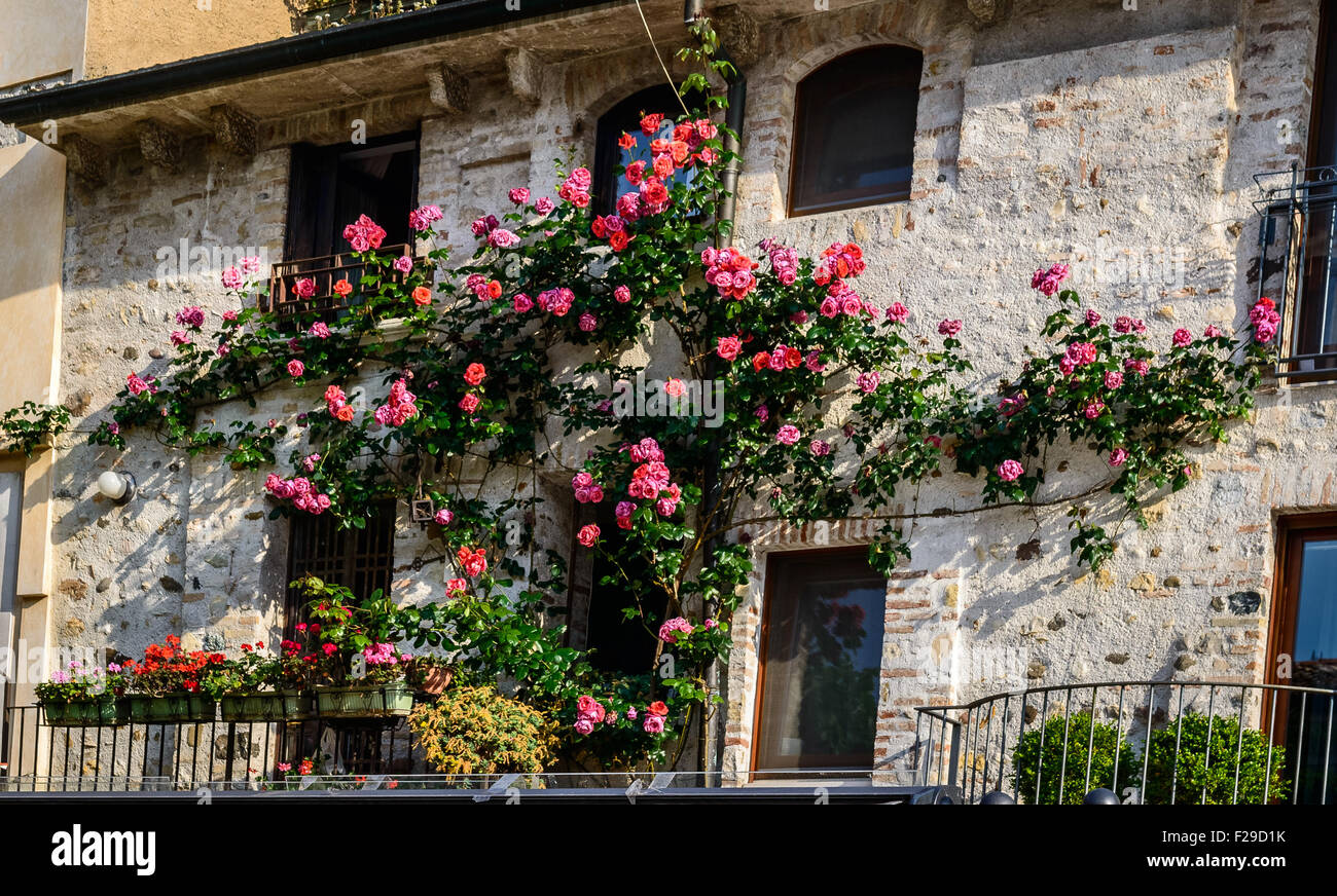 Balcony In Marble Wall : Beautiful vintage balcony with colorful flowers and stone