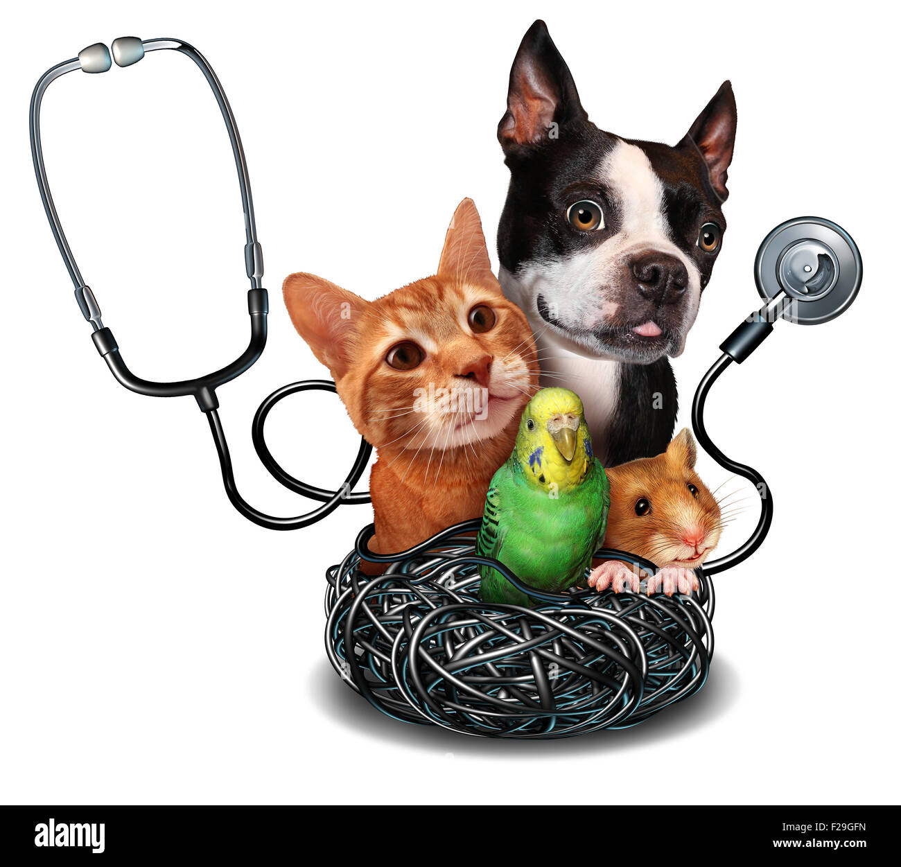 Veterinary care and pet medicine concept as a group of domesticated animals as a cat dog hamster and bird as a symbol - Stock Image