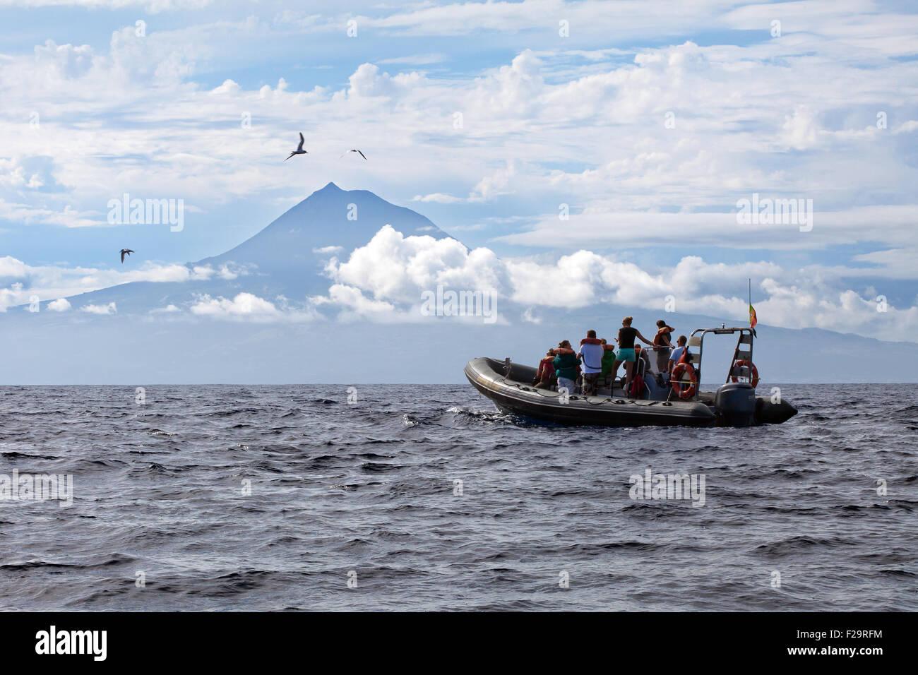 Sail boat near Pico volcano island in Azores, Portugal - Stock Image