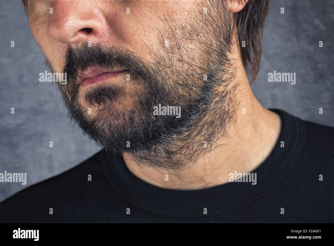 Male facial hair, adult caucasian man with beard - Stock Image