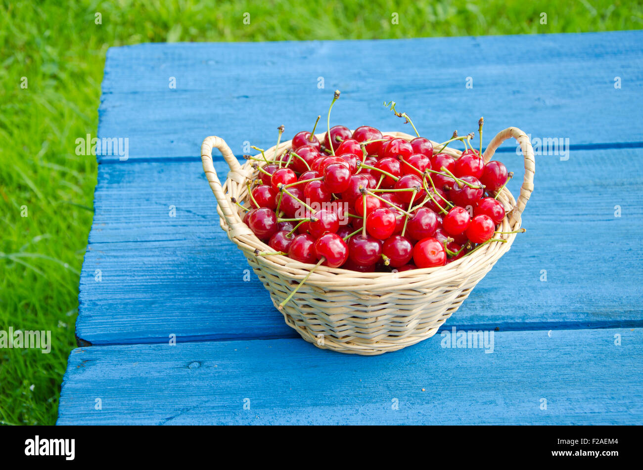 Ripe sweet cherries in wicker basket on blue table - Stock Image