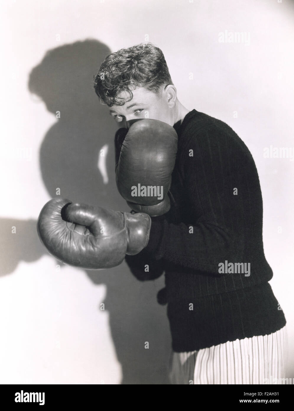 Defensive boxer (OLVI008_OU045_F) - Stock Image