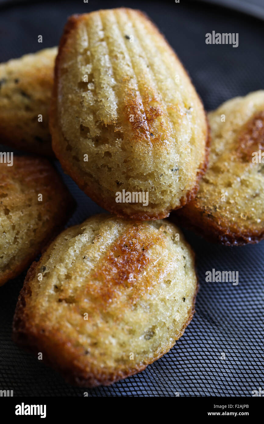Madeleines. Selective focus. - Stock Image