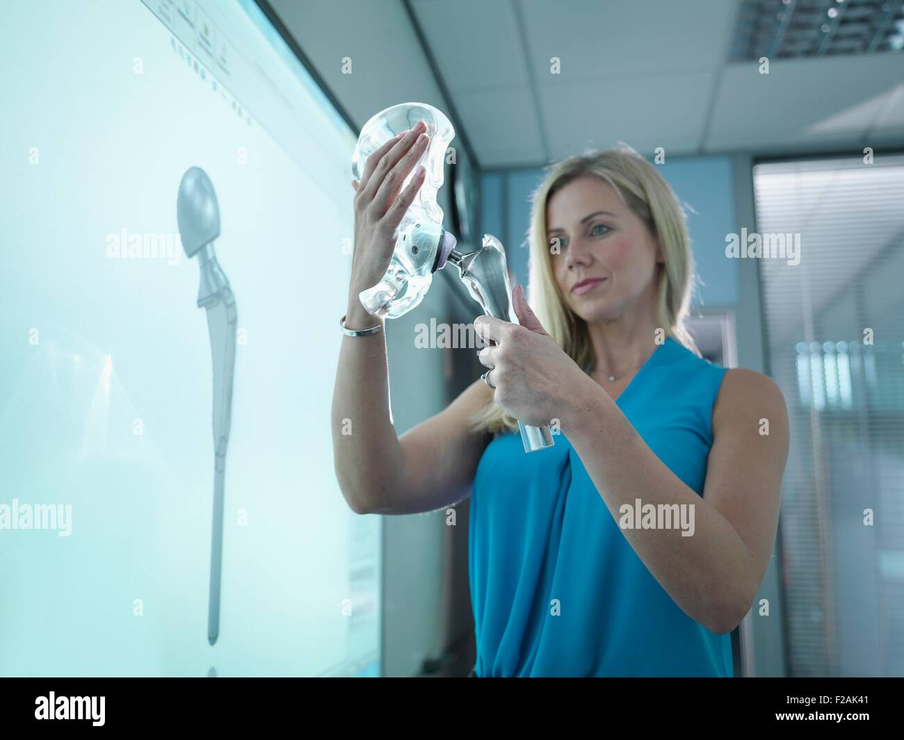 Medical product designer inspecting hip joint model with graphical screen - Stock Image