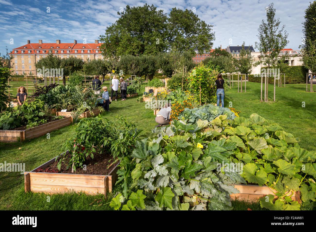 Community gardening, Rosenborg Castle´s garden in Copenhagen, Denmark - Stock Image