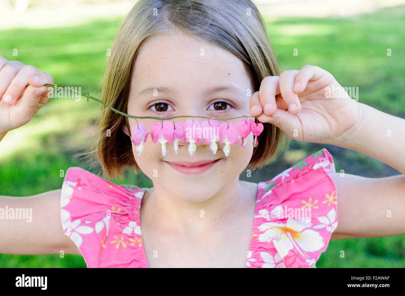 Little girl holding bleeding heart plant stem - Stock Image