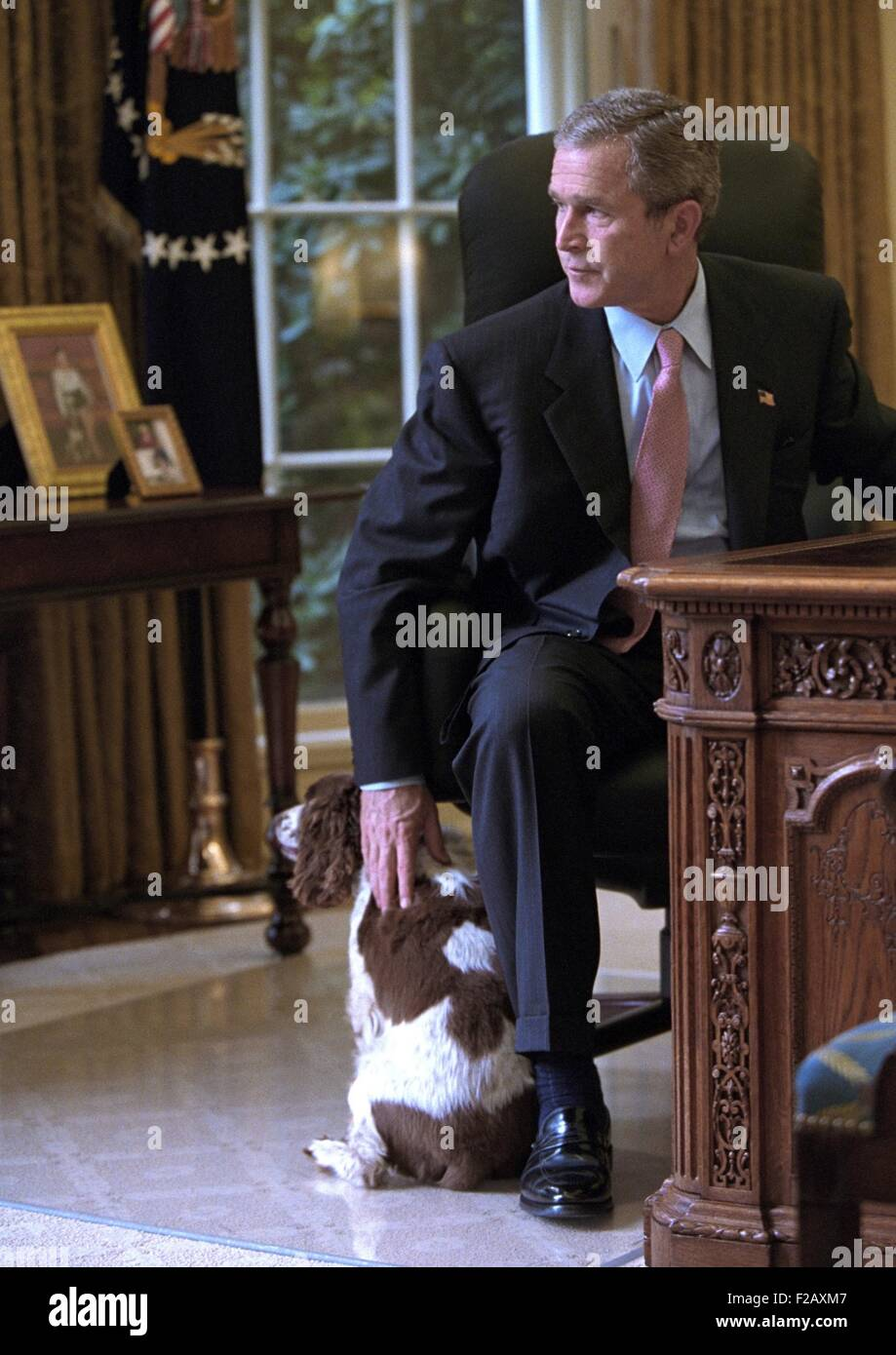 president in oval office. President George W. Bush Pets Spot In The Oval Office Of White House. Oct. 1, 2001. (BSLOC20152170 I