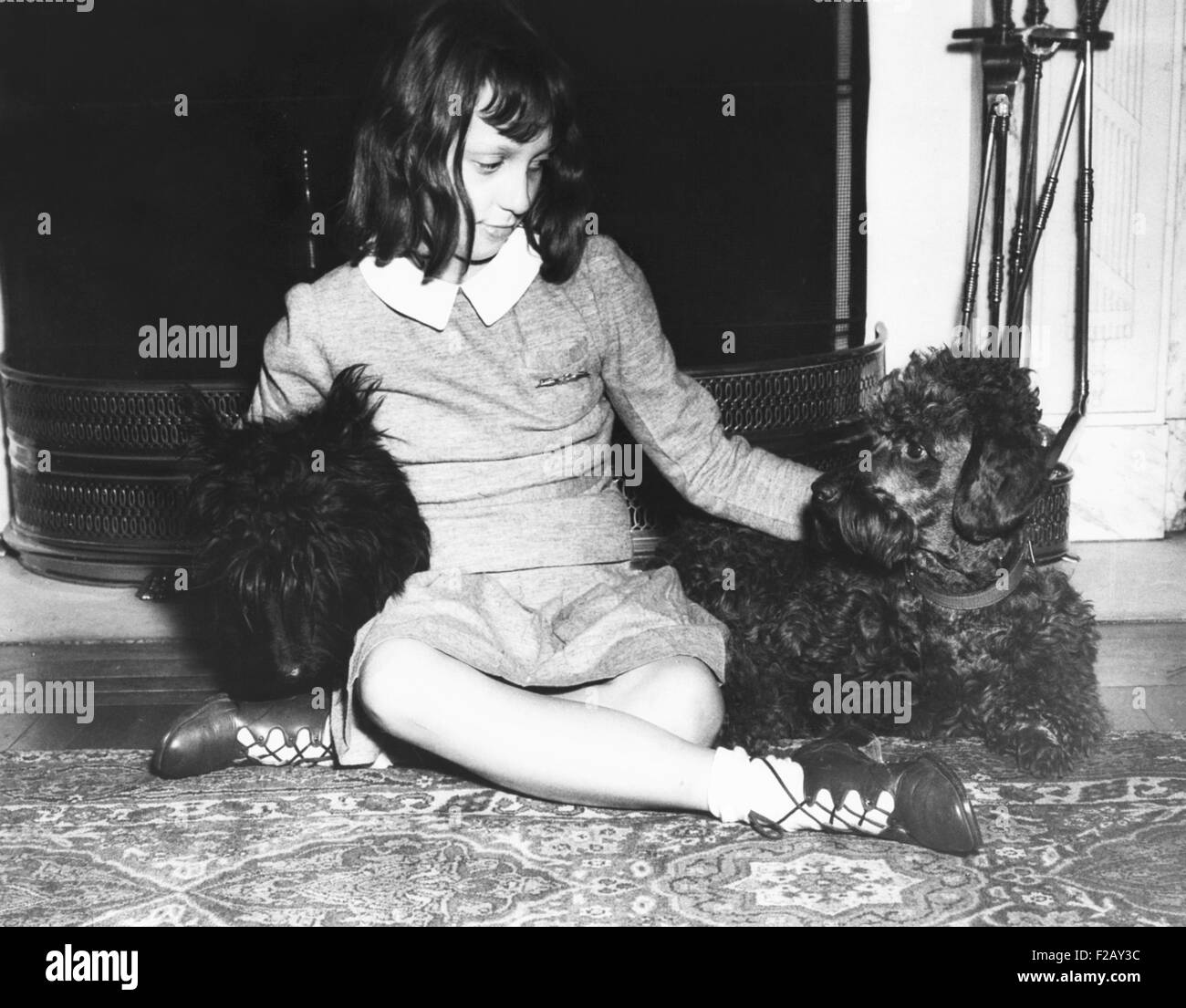 Diana Hopkins, daughter of 'Assistant President' Harry Hopkins, with two playmates: FDR's Scottie, Falla (left), Stock Photo