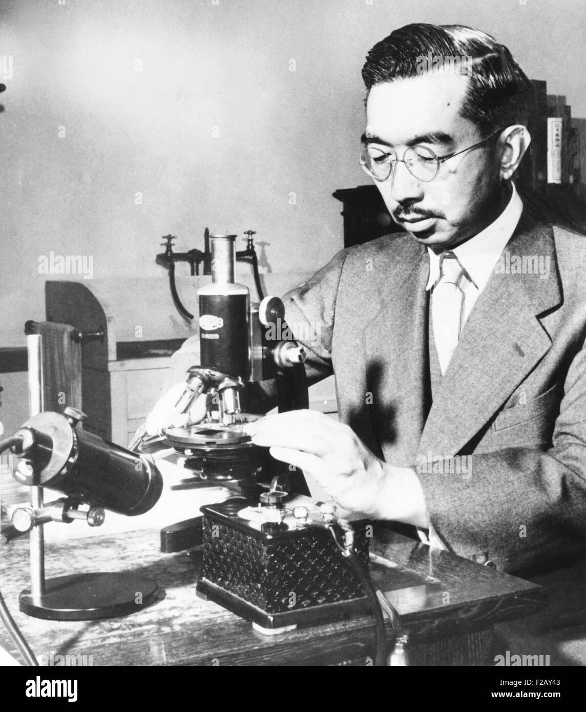 Emperor Hirohito puts specimens on a slide under the microscope in his marine biology laboratory. July 31, 1954. - Stock Image