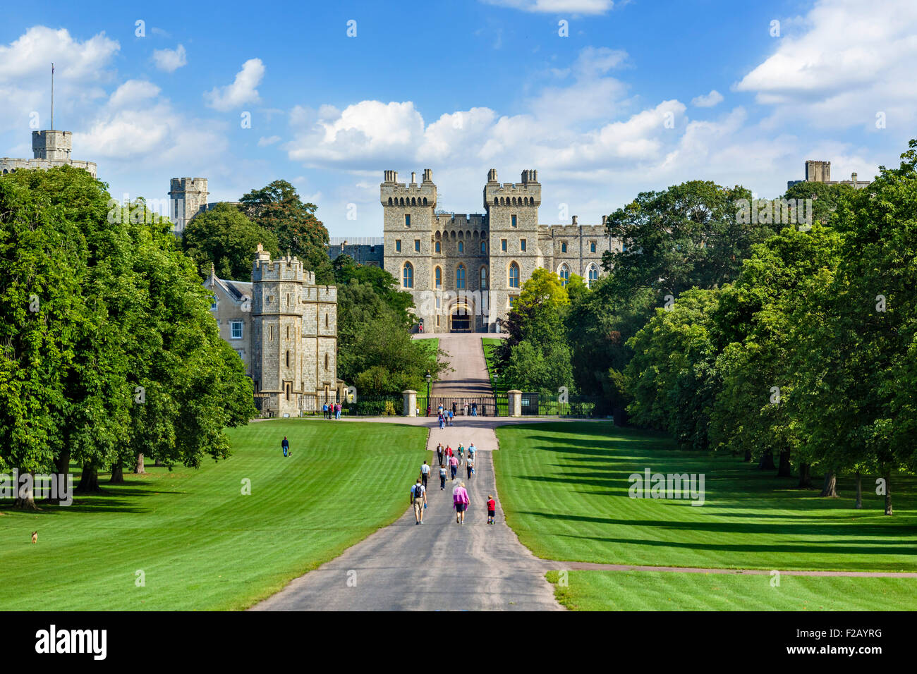 Walkers on the Long Walk with Windsor Castle in the distance, Windsor Great Park, Berkshire, England, UK - Stock Image