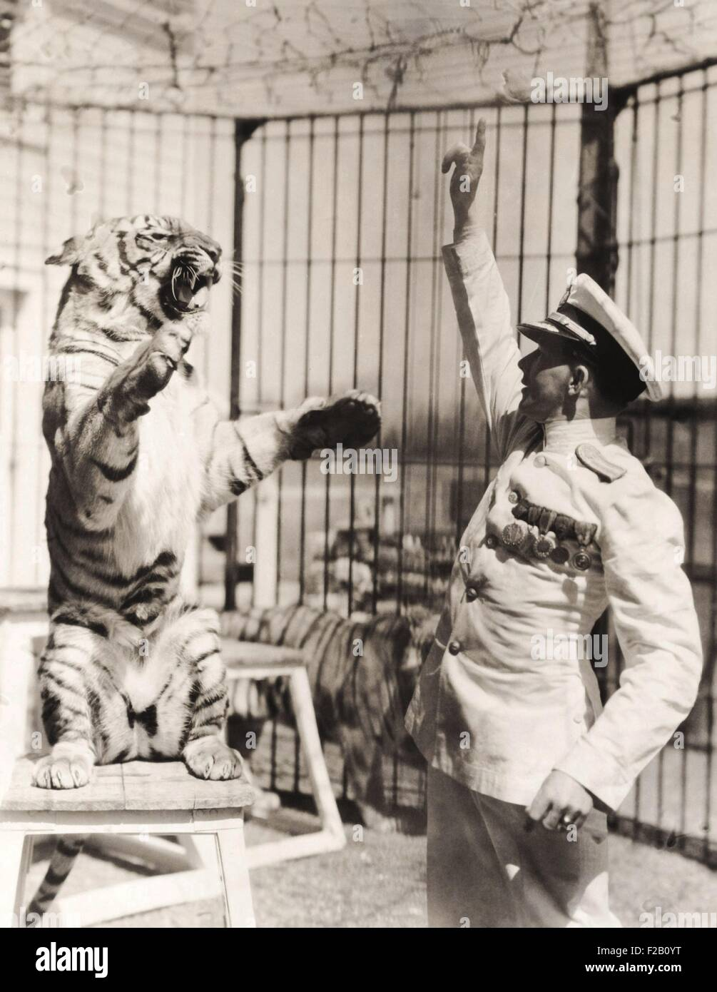 Capt. Roman Proske, an animal trainer born in Vienna in 1898. At age 13 he ran away from home to join the circus. - Stock Image