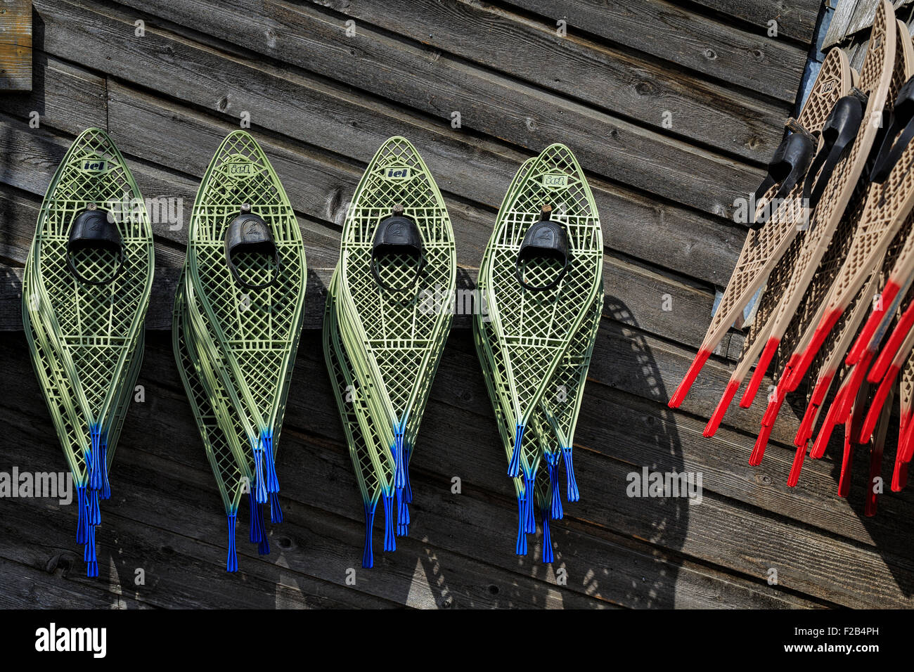 Snowshoes hanging on wall. - Stock Image