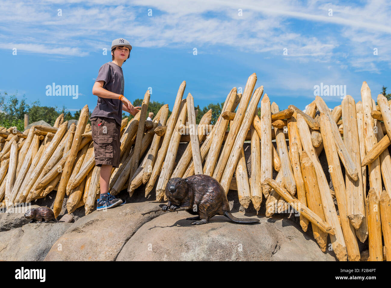 Boy at beaver lodge exhibit, Edmonton Valley Zoo, Edmonton, Alberta, Canada - Stock Image