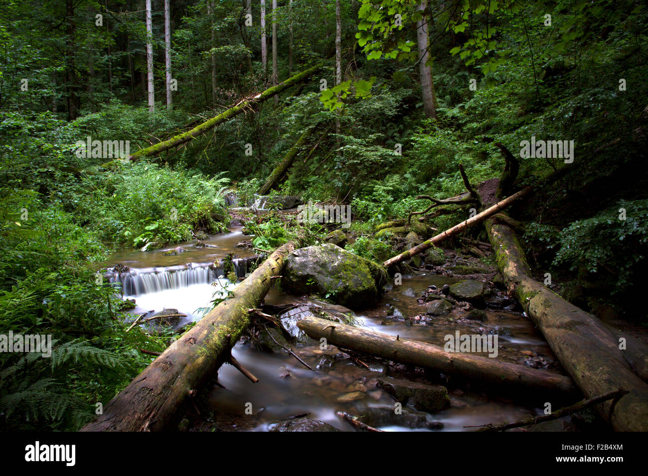 waterfalls in the black forest Germany. Long exposure - Stock Image