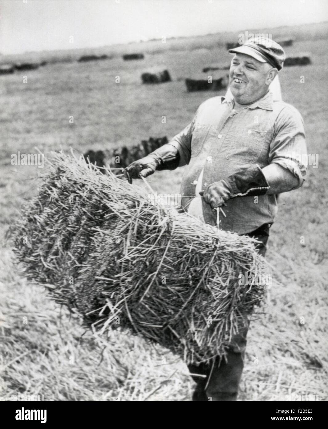 Whittaker Chambers, at work on his farm in Westminster Maryland. July 10, 1949. He was chief prosecution witness - Stock Image