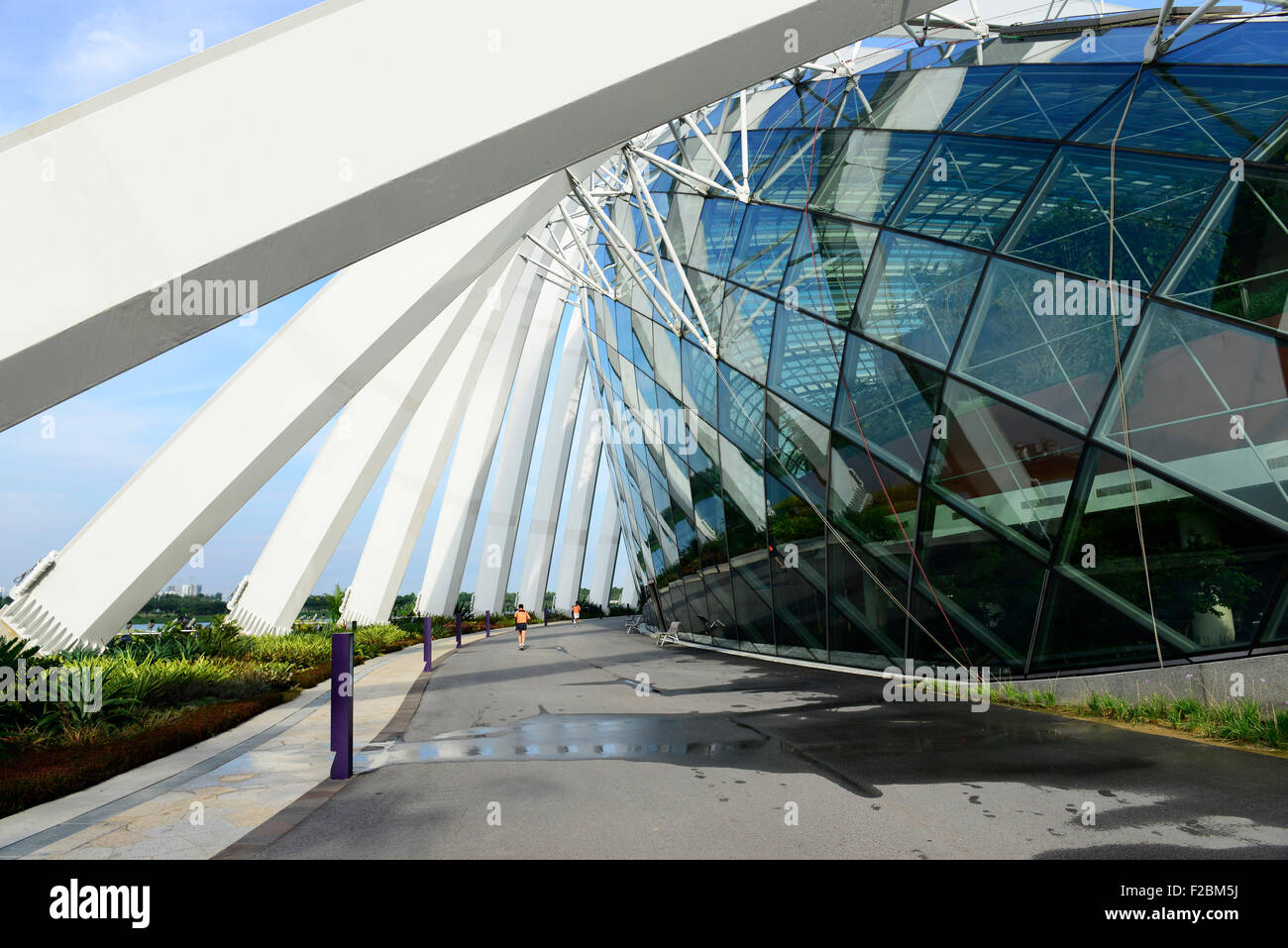 Jogging by the flower dome at the Gardens by the Bay. - Stock Image