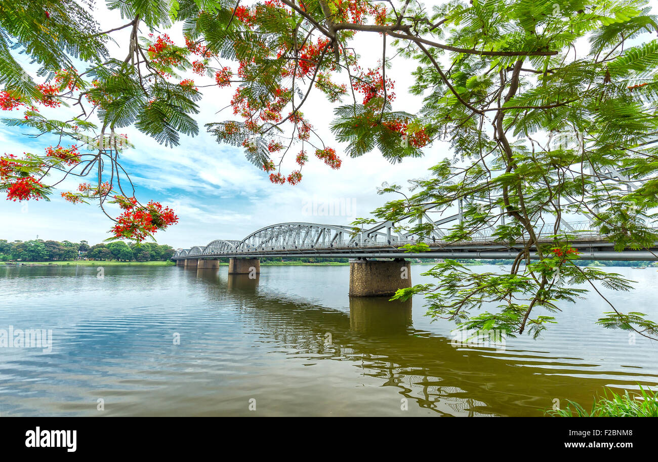 Trang Tien Bridge looming flamboyant side branches reflecting on the river - Stock Image