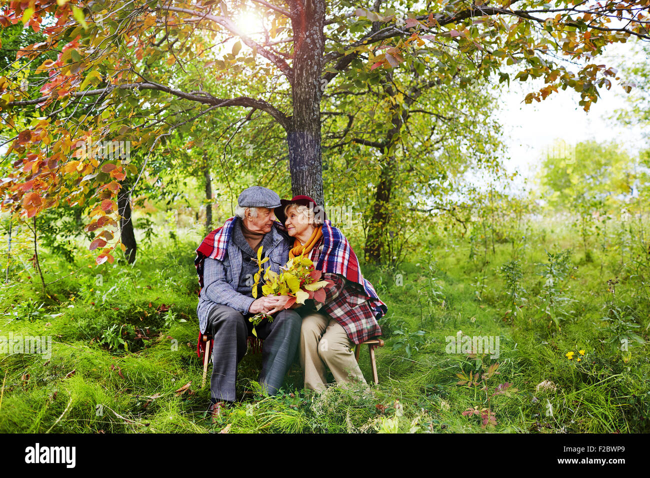 Affectionate seniors sitting under tree in park on autumn day - Stock Image