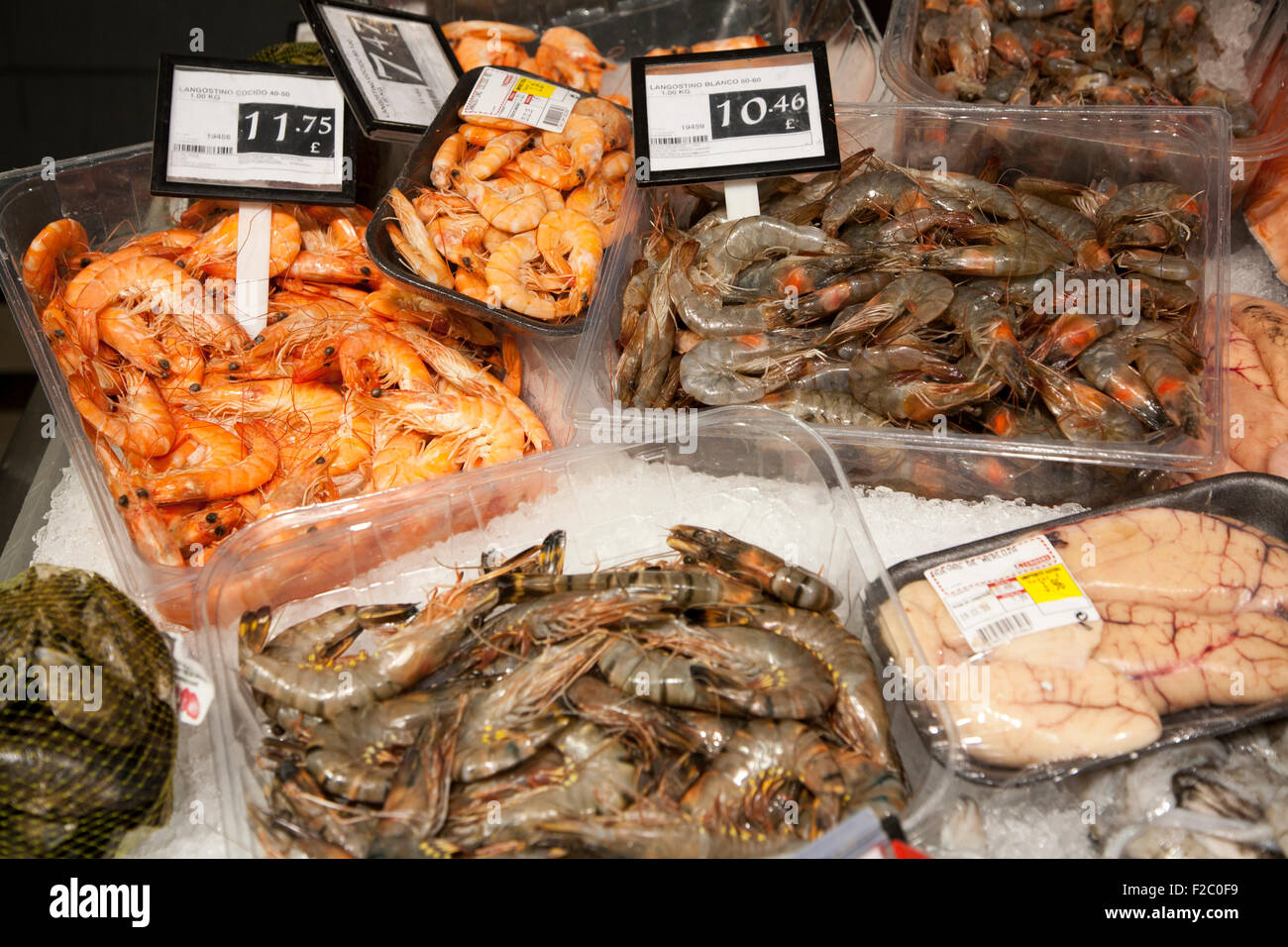 Fresh local fish on sale in ice, Gibraltar, British terroritory in southern Europe - Stock Image