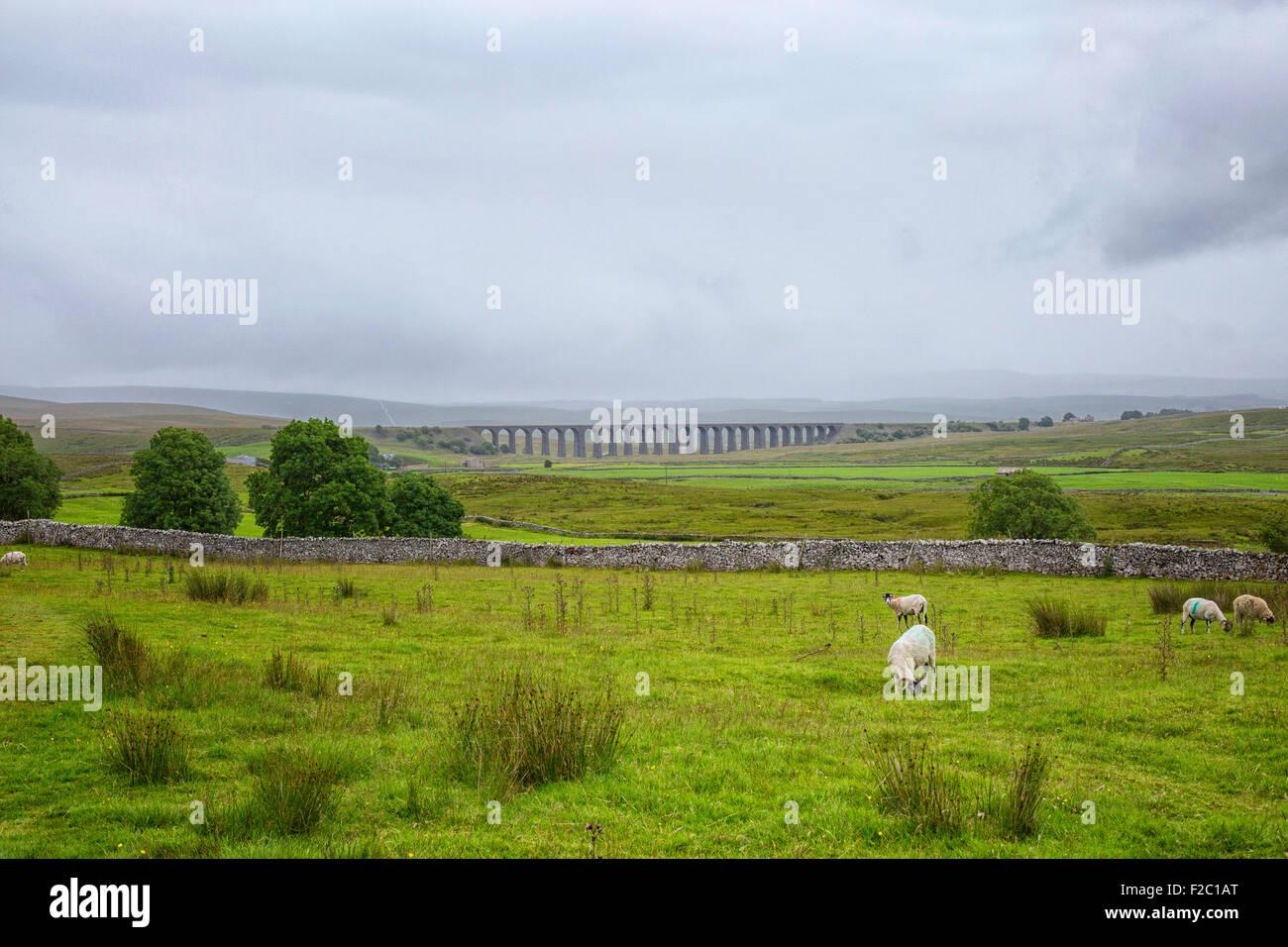 Ribblehead Railway Bridge in Yorkshire - Stock Image