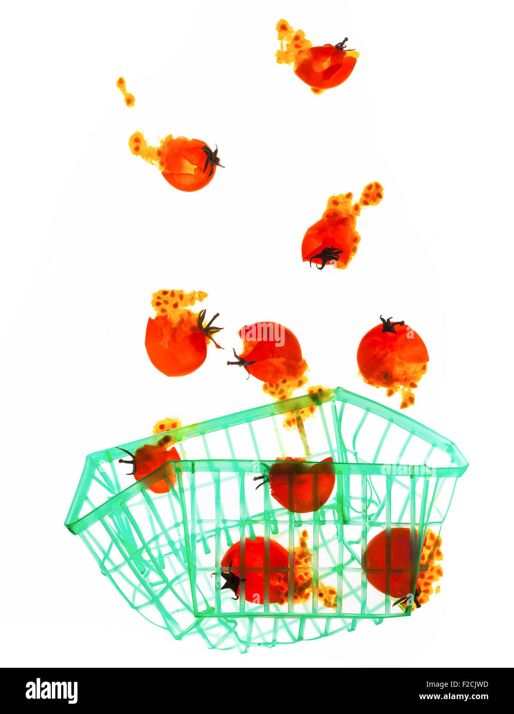 Smashed cherry tomatoes rise out of a flattened plastic green carton - Stock Image