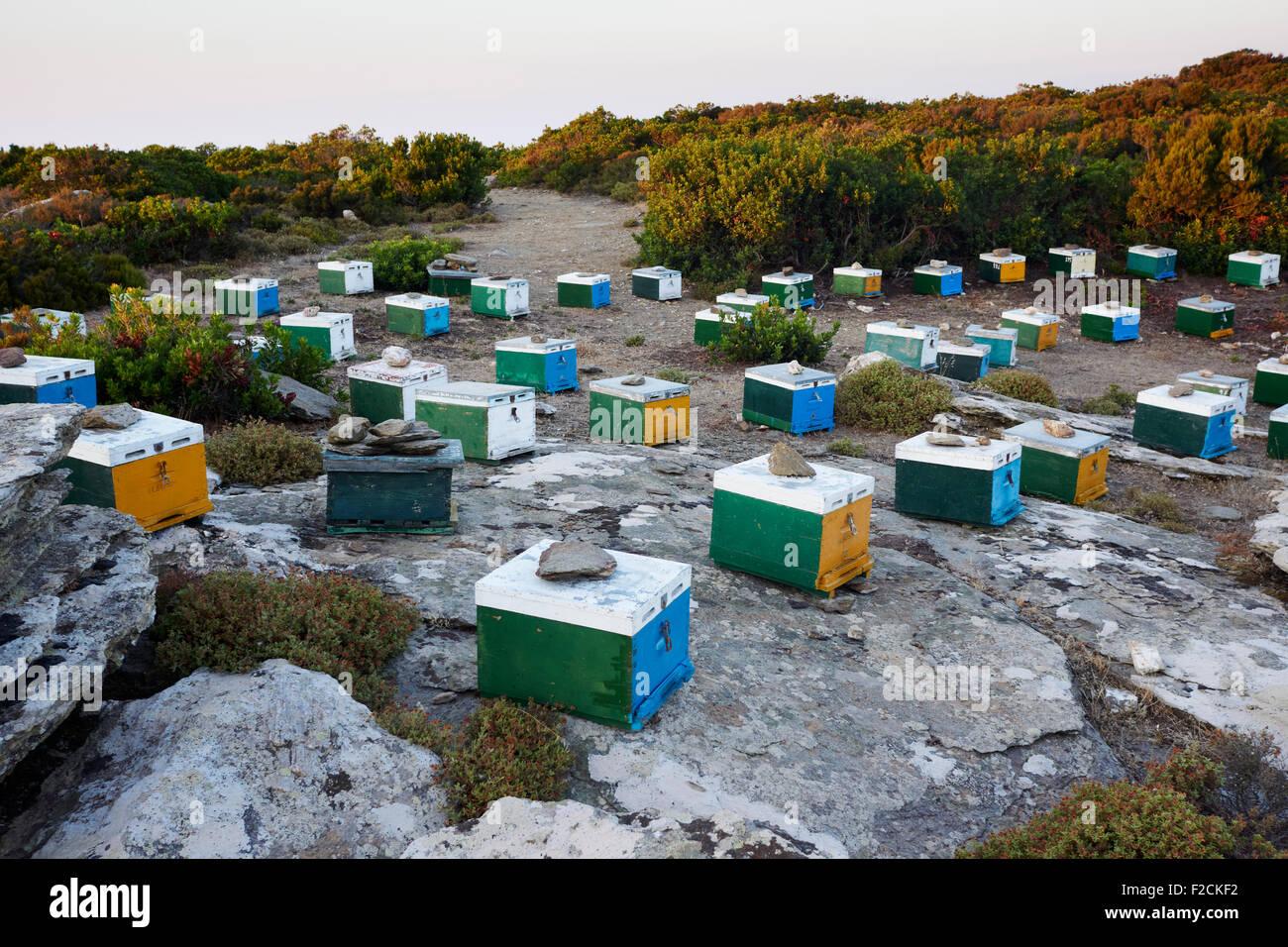 Beehives on the Greek island of Ikaria - Stock Image