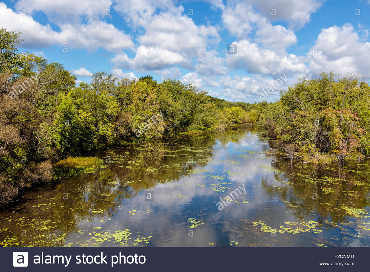 Side meander on the Otonabee River part of the historic Trent-Severn Waterway near Peterborough in Ontario Canada - Stock Image