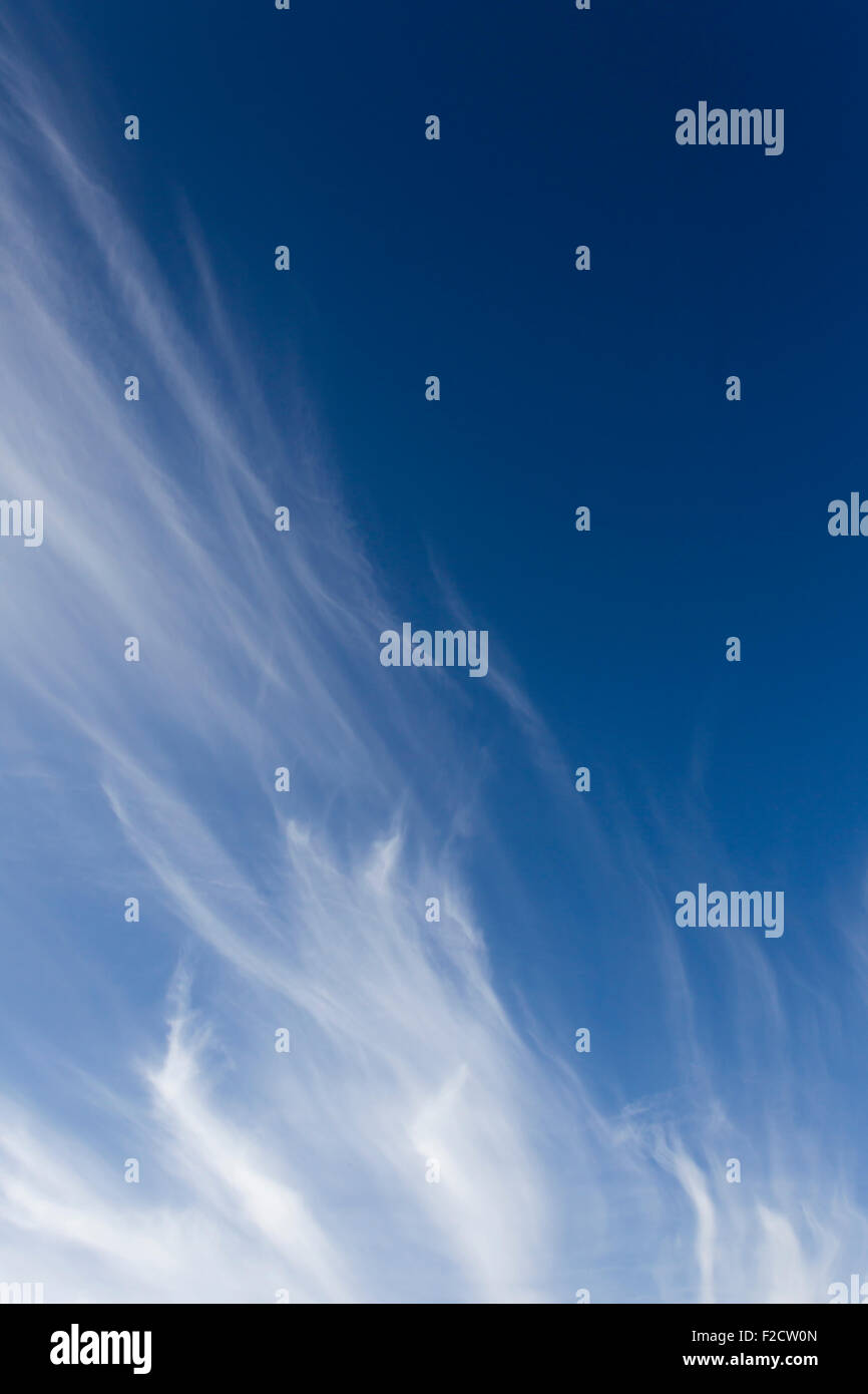 Wispy horse's tails cirrus clouds against a blue sky - Stock Image