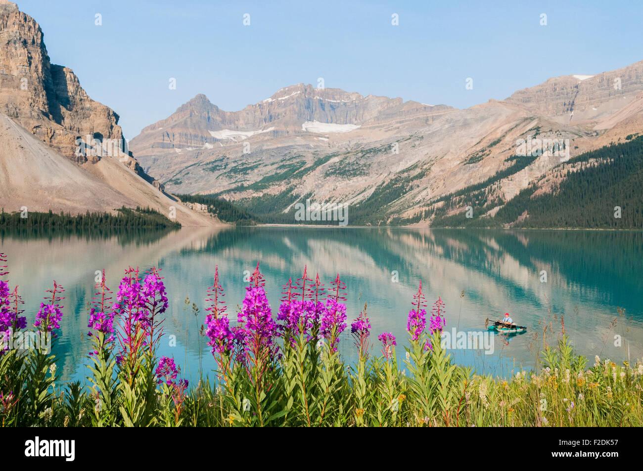 Fisherman, Bow Lake, Banff National Park, Alberta, Canada - Stock Image