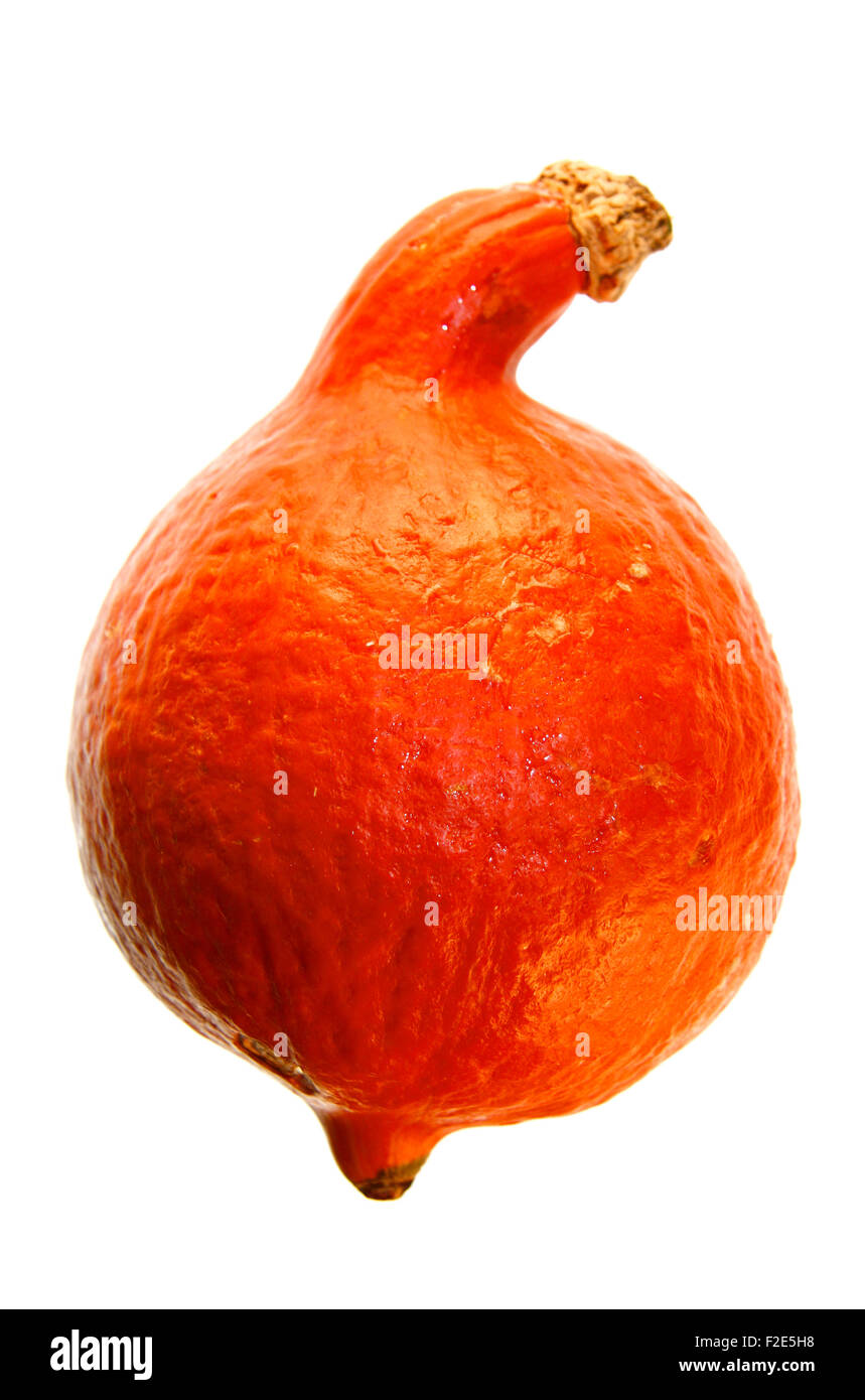 Hokkaido-Kuerbis / pumpkin - Symbolbild Nahrungsmittel. Stock Photo