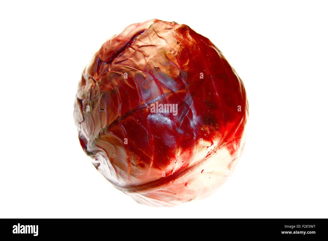 Rotkohl - Symbolbild Nahrungsmittel. - Stock Image