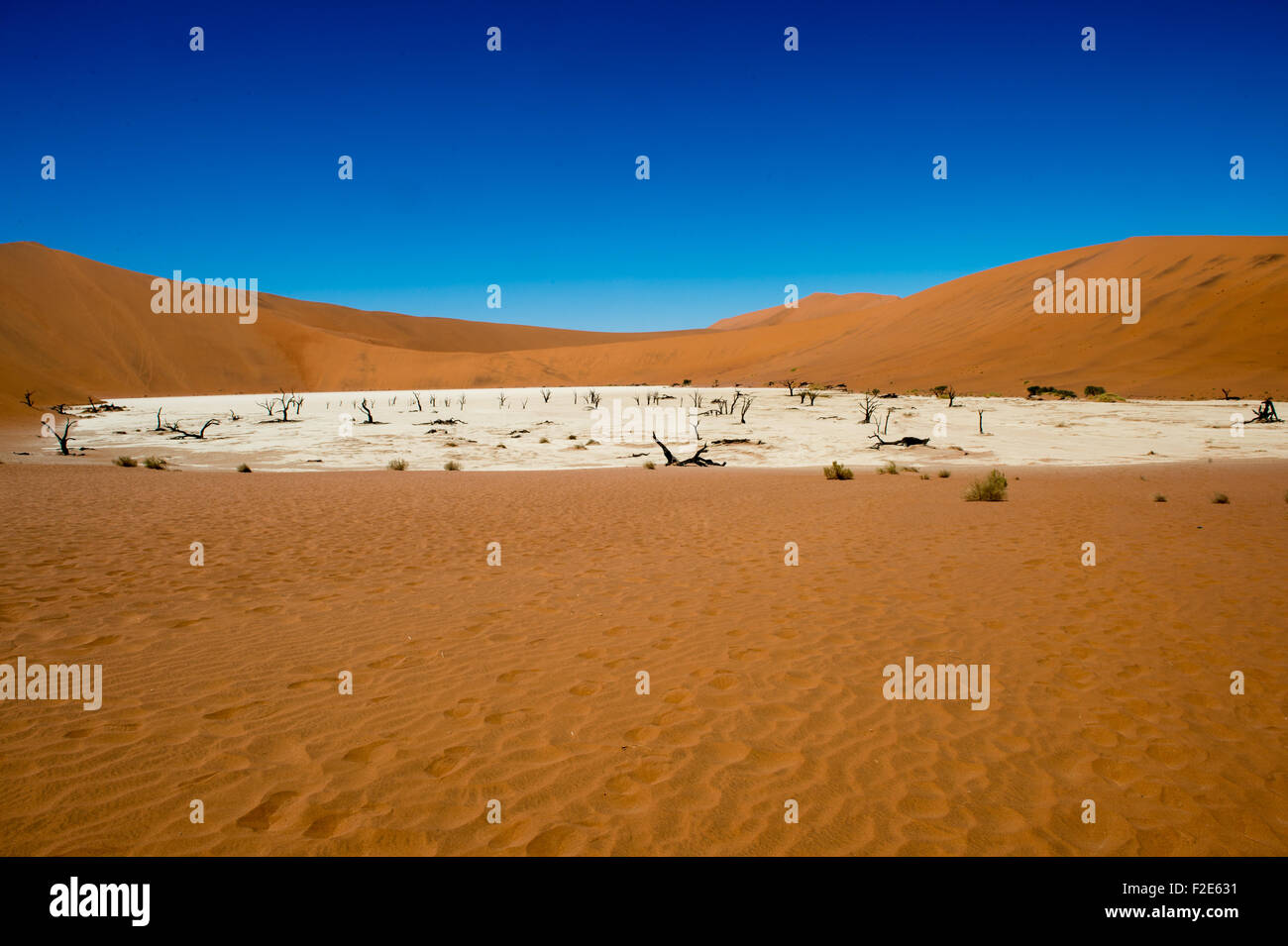 Deadvlei pan and dunes, Estimated 900 year old dead camel thorn trees in Namib-Naukluft National Park, Namibia Africa - Stock Image