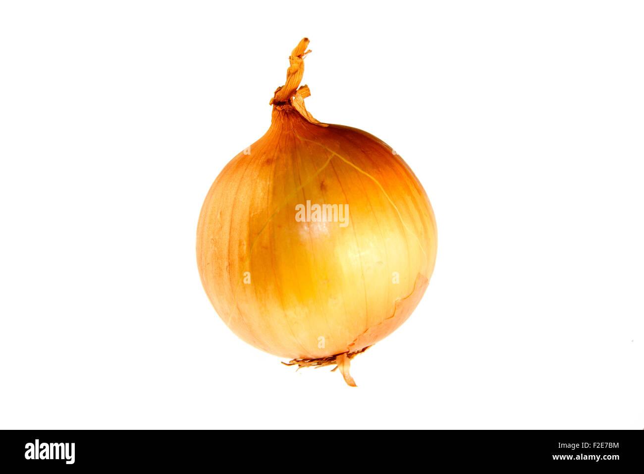 Zwiebel - Symbolbild Nahrungsmittel. Stock Photo