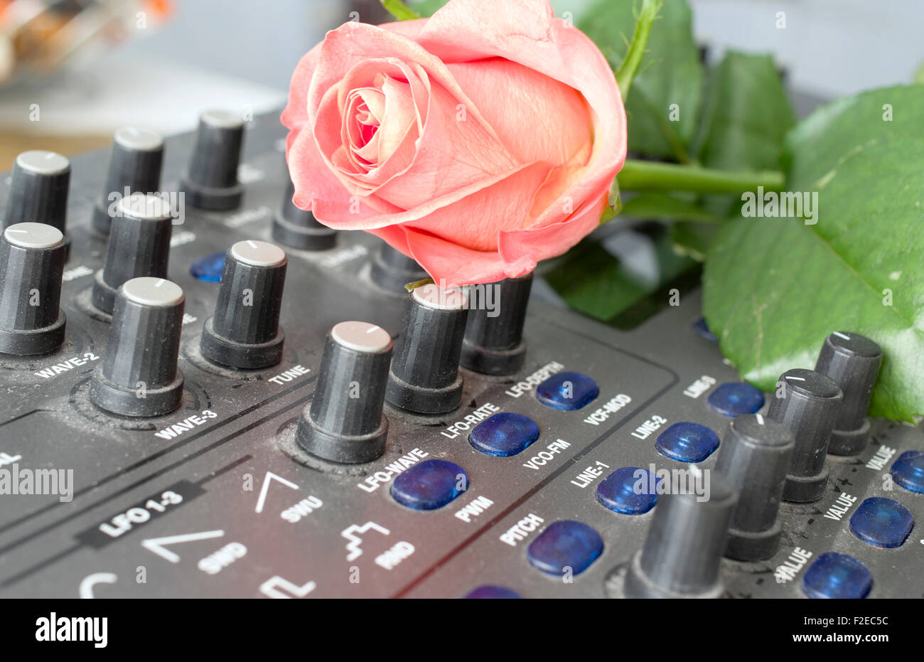Red rose on the synthesizer - Stock Image