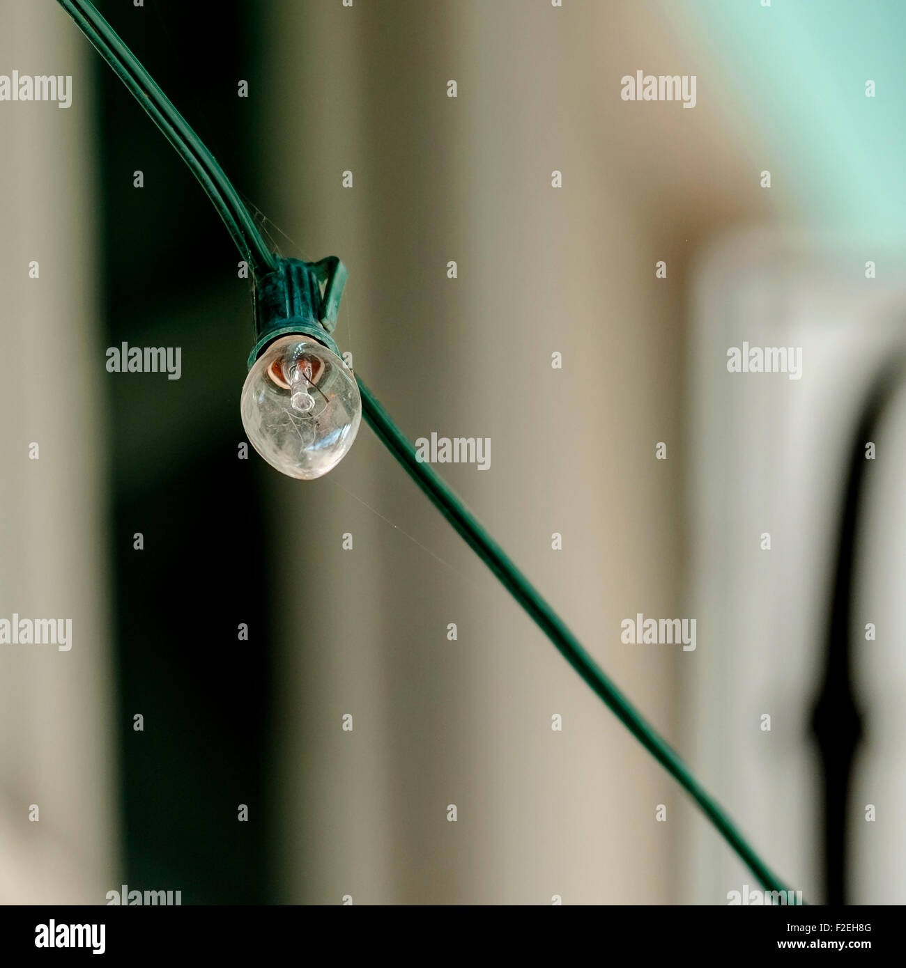 Illuminating Wire Stock Photos Images Alamy Subaru Interior Illumination Wiring A Clear Small Light Bulb On Showing The Monofilament Image