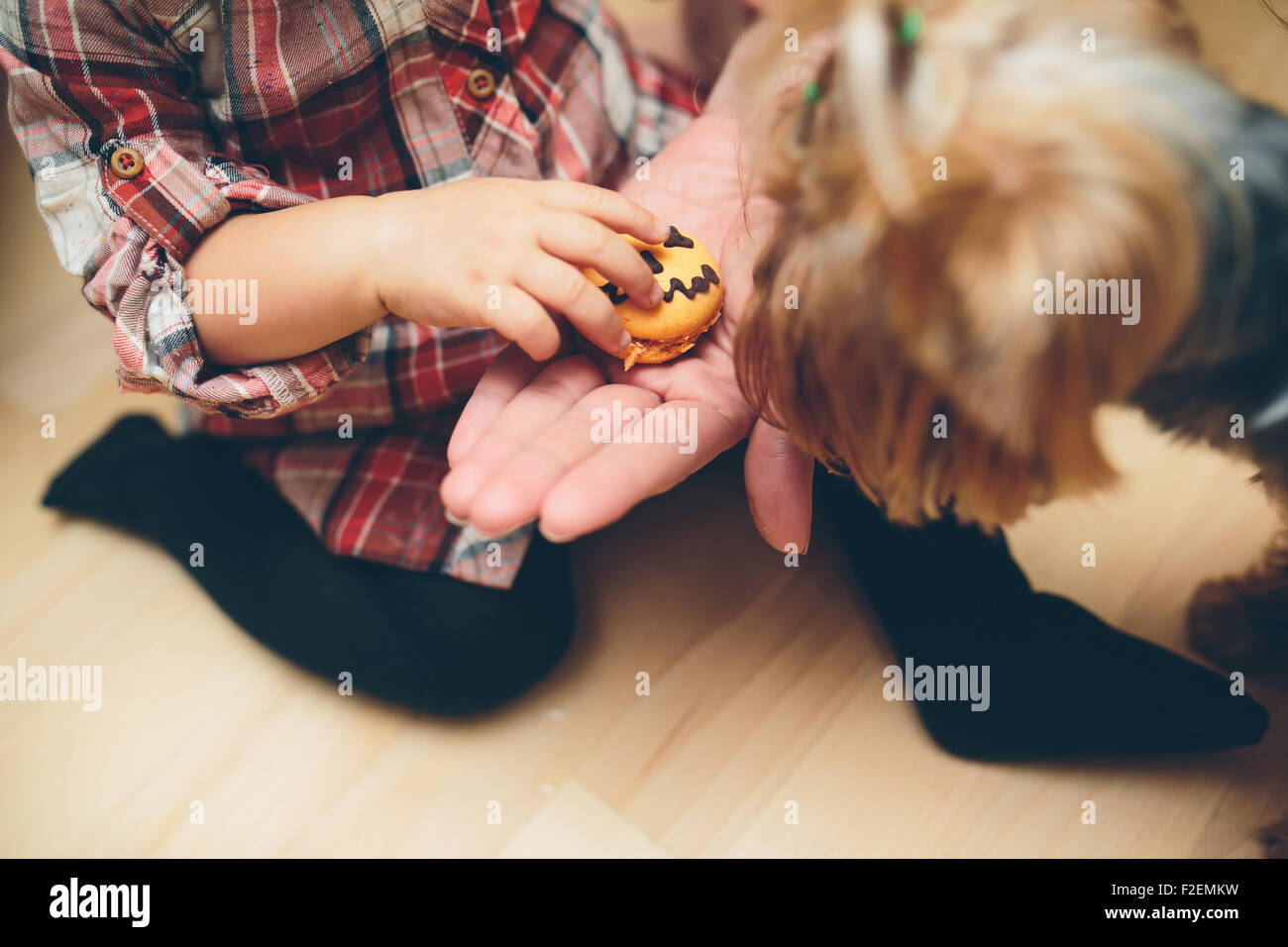 Mother with daughter standing in kitchen - Stock Image