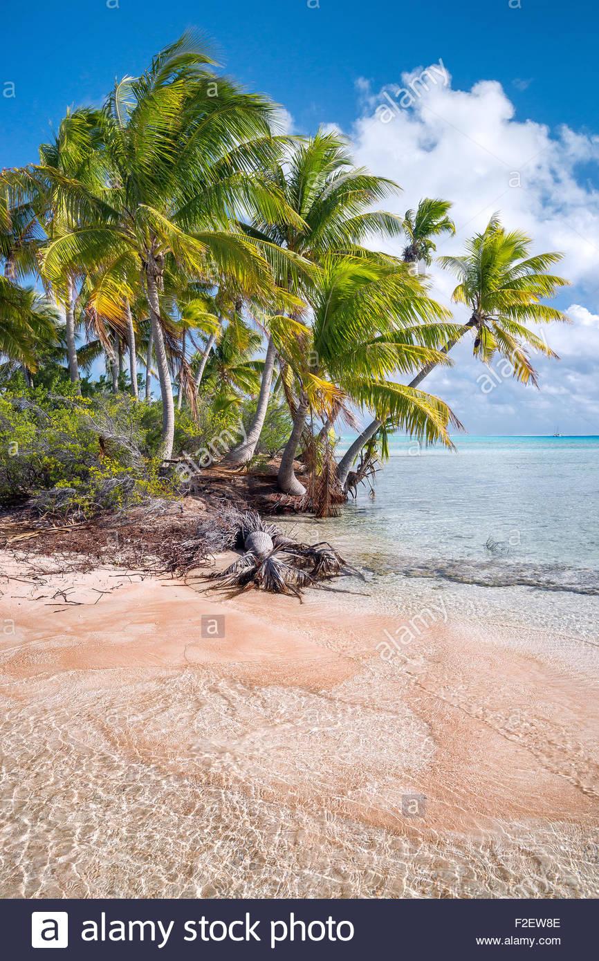 Fakarava (French Polynesia) Stock Photo