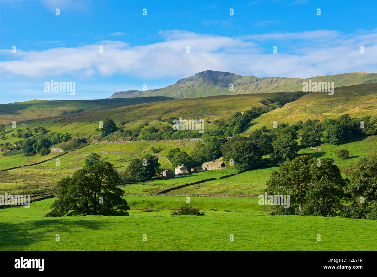 Mallerstang valley and Wild Boar Fell, Cumbria, England UK - Stock Image