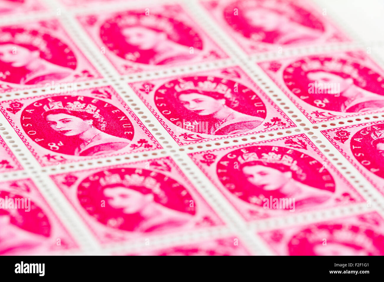 Sheet of 1950's British Royal Mail 8d pink magenta postage stamps from the Wildings definitive issue with portrait - Stock Image