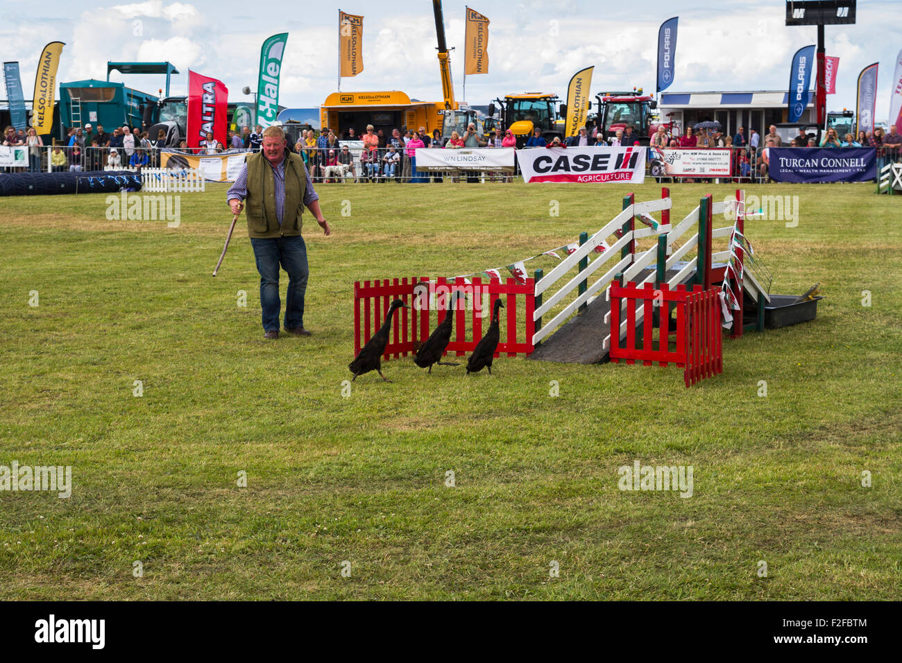 Quack Commandos display at the 2015 Haddington Show - Stock Image