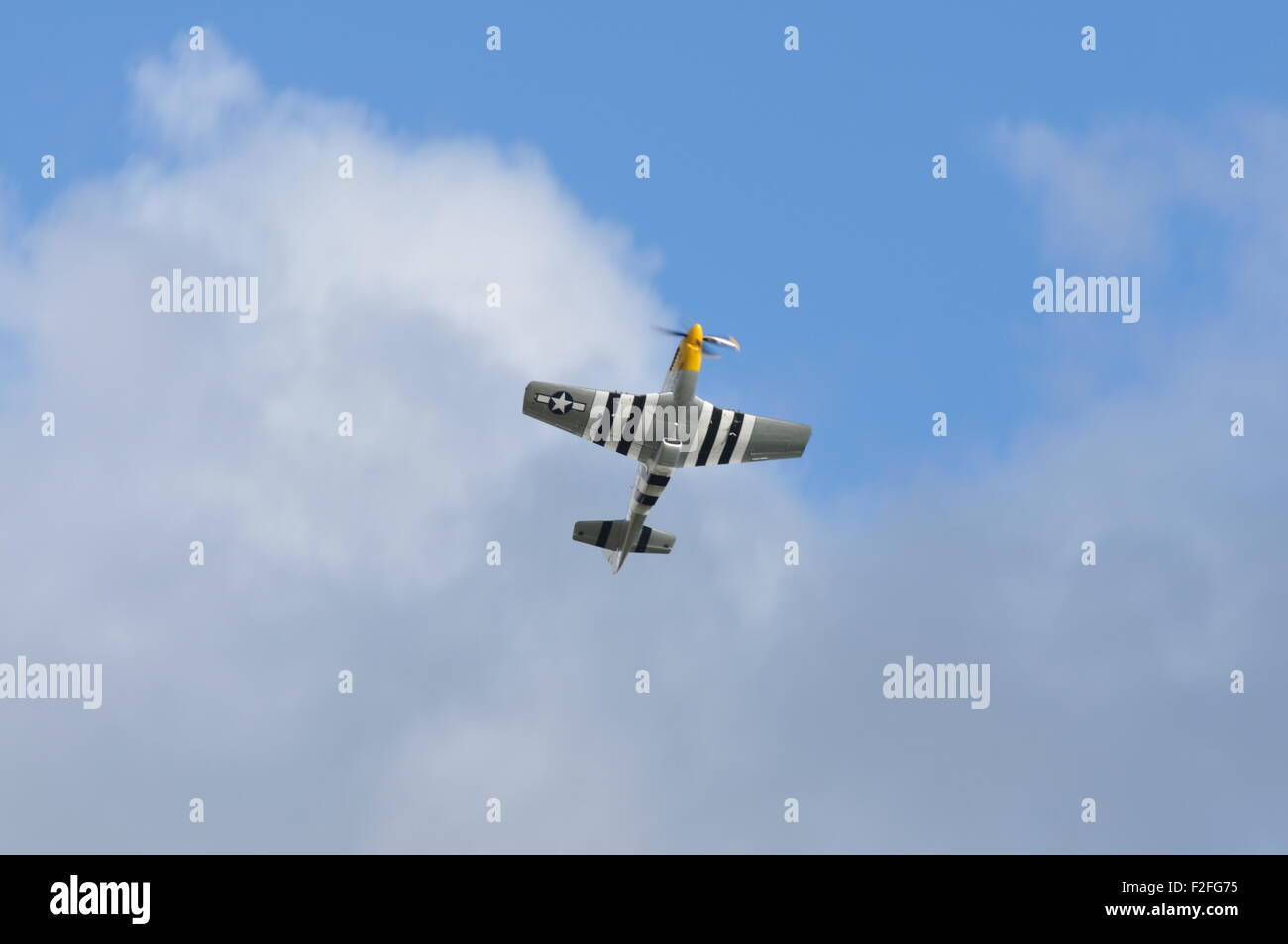 American WW2 fighter Mustang P51 Ferocious Frankie flying display underside Stock Photo
