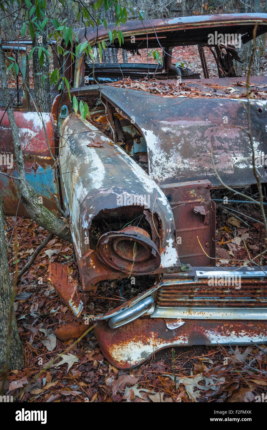 Junked vintage car abandoned in the woods at Providence Canyon State Park in  Lumpkin, Georgia. - Stock Image
