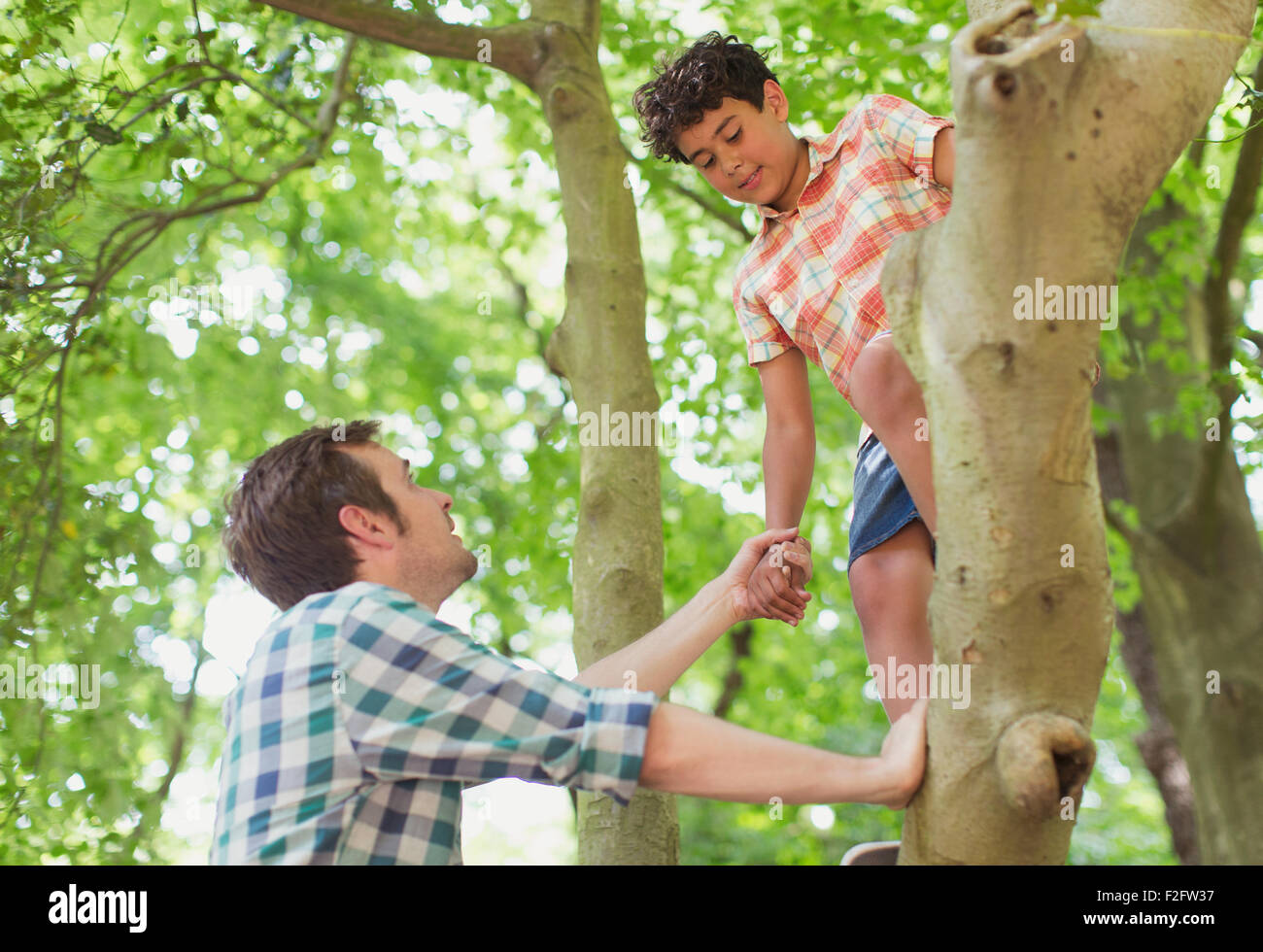Father helping son climbing tree - Stock Image